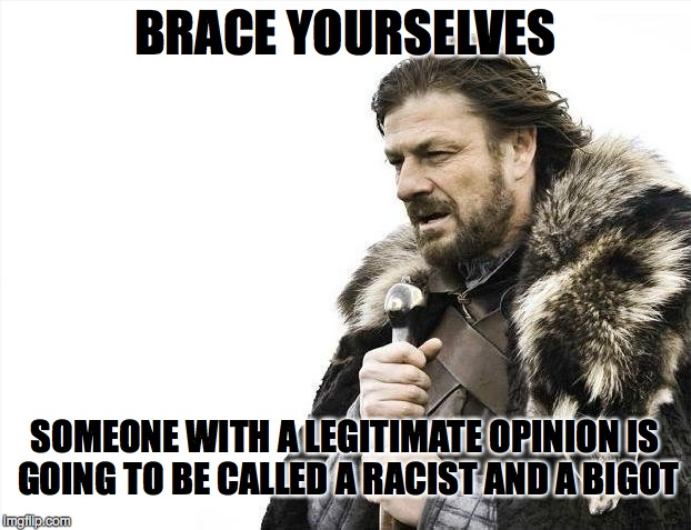 Brace Yourselves X is Coming Meme | BRACE YOURSELVES SOMEONE WITH A LEGITIMATE OPINION IS GOING TO BE CALLED A RACIST AND A BIGOT | image tagged in memes,brace yourselves x is coming | made w/ Imgflip meme maker