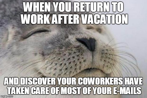 Happy Seal | WHEN YOU RETURN TO WORK AFTER VACATION AND DISCOVER YOUR COWORKERS HAVE TAKEN CARE OF MOST OF YOUR E-MAILS | image tagged in happy seal,AdviceAnimals | made w/ Imgflip meme maker