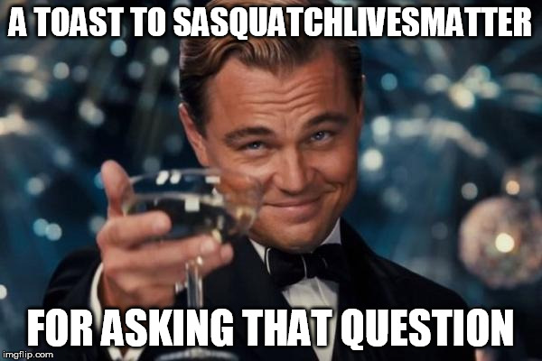 Leonardo Dicaprio Cheers Meme | A TOAST TO SASQUATCHLIVESMATTER FOR ASKING THAT QUESTION | image tagged in memes,leonardo dicaprio cheers | made w/ Imgflip meme maker