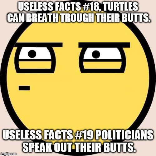 Random, Useless Fact of the Day | USELESS FACTS #18, TURTLES CAN BREATH TROUGH THEIR BUTTS. USELESS FACTS #19 POLITICIANS SPEAK OUT THEIR BUTTS. | image tagged in random useless fact of the day | made w/ Imgflip meme maker