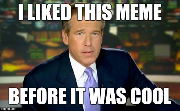 Brian Williams Was There Meme | I LIKED THIS MEME BEFORE IT WAS COOL | image tagged in memes,brian williams was there | made w/ Imgflip meme maker