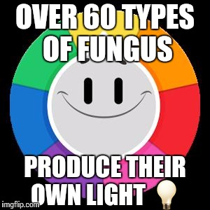 Trivia Crack | OVER 60 TYPES OF FUNGUS PRODUCE THEIR OWN LIGHT  | image tagged in trivia crack | made w/ Imgflip meme maker