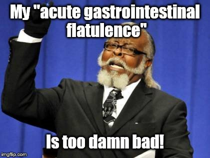 "Too Damn High Meme | My ""acute gastrointestinal flatulence"" Is too damn bad! 