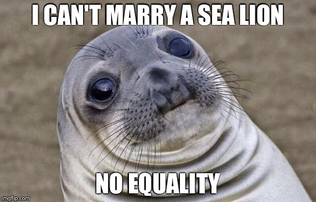 Awkward Moment Sealion Meme | I CAN'T MARRY A SEA LION NO EQUALITY | image tagged in memes,awkward moment sealion | made w/ Imgflip meme maker