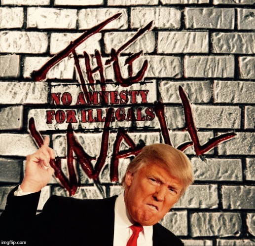 The Wall Remastered | image tagged in donald trump,illegal,politics,election 2016,republican,liberals | made w/ Imgflip meme maker