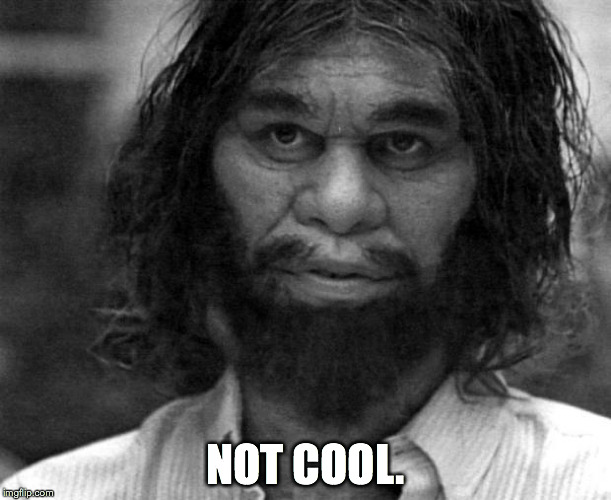 Geico Caveman | NOT COOL. | image tagged in geico caveman | made w/ Imgflip meme maker