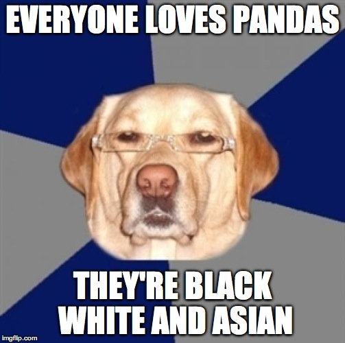racist dog | EVERYONE LOVES PANDAS THEY'RE BLACK WHITE AND ASIAN | image tagged in racist dog | made w/ Imgflip meme maker
