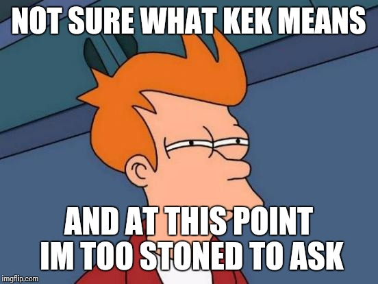 Futurama Fry Meme | NOT SURE WHAT KEK MEANS AND AT THIS POINT IM TOO STONED TO ASK | image tagged in memes,futurama fry | made w/ Imgflip meme maker