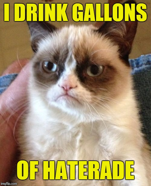 Grumpy Cat Meme | I DRINK GALLONS OF HATERADE | image tagged in memes,grumpy cat | made w/ Imgflip meme maker