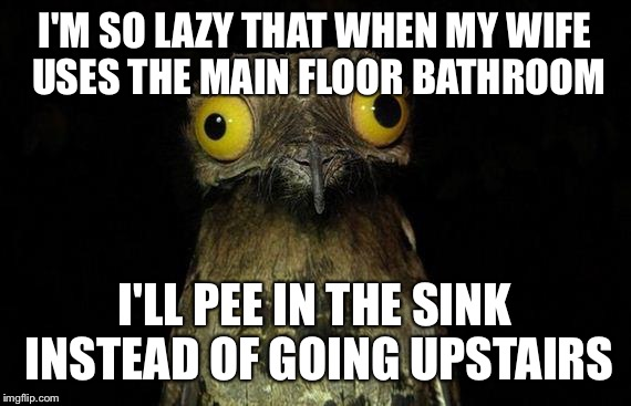 Weird Stuff I Do Potoo | I'M SO LAZY THAT WHEN MY WIFE USES THE MAIN FLOOR BATHROOM I'LL PEE IN THE SINK INSTEAD OF GOING UPSTAIRS | image tagged in memes,weird stuff i do potoo | made w/ Imgflip meme maker