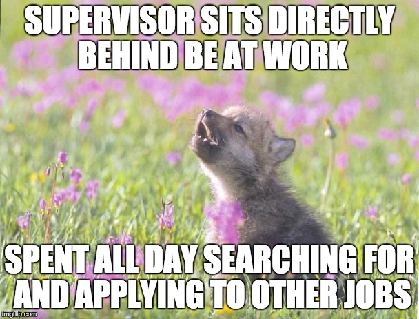 Shows You How Much I Care For This Current Job Imgflip