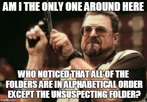 Am I The Only One Around Here Meme | AM I THE ONLY ONE AROUND HERE WHO NOTICED THAT ALL OF THE FOLDERS ARE IN ALPHABETICAL ORDER EXCEPT THE UNSUSPECTING FOLDER? | image tagged in memes,am i the only one around here | made w/ Imgflip meme maker