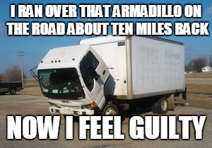 Okay Truck | I RAN OVER THAT ARMADILLO ON THE ROAD ABOUT TEN MILES BACK NOW I FEEL GUILTY | image tagged in memes,okay truck | made w/ Imgflip meme maker