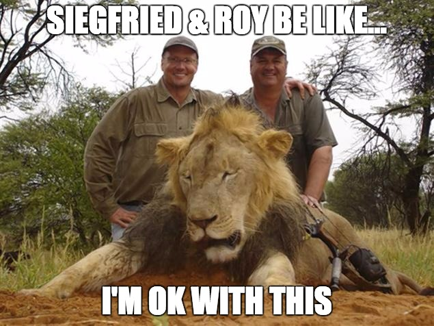 Cecil the Lion | SIEGFRIED & ROY BE LIKE... I'M OK WITH THIS | image tagged in lions,lion king,irony,nature,political correctness,mother nature | made w/ Imgflip meme maker