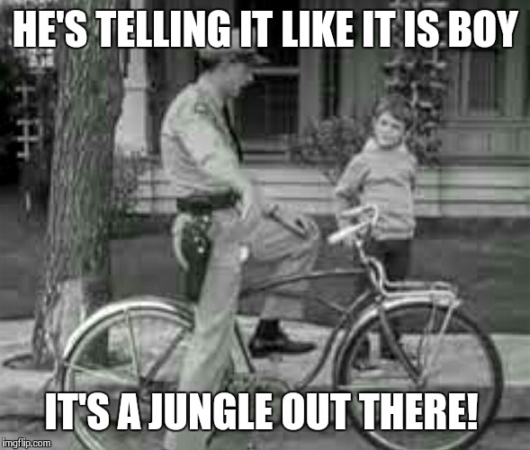 HE'S TELLING IT LIKE IT IS BOY IT'S A JUNGLE OUT THERE! | made w/ Imgflip meme maker