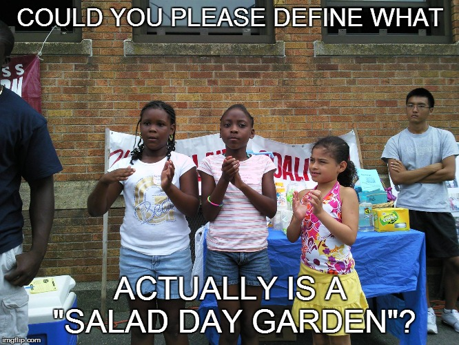 "NAMES ARE NICE BUT. . . | COULD YOU PLEASE DEFINE WHAT ACTUALLY IS A ""SALAD DAY GARDEN""? 