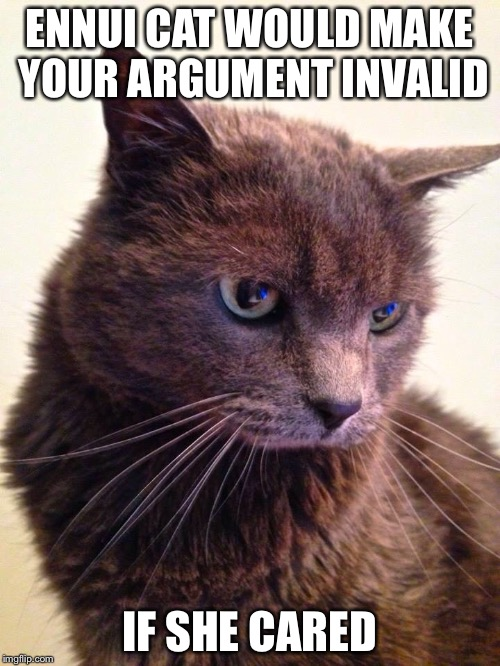 Your argument is probably invalid, anyway... | ENNUI CAT WOULD MAKE YOUR ARGUMENT INVALID IF SHE CARED | image tagged in ennui cat,your argument is invalid | made w/ Imgflip meme maker