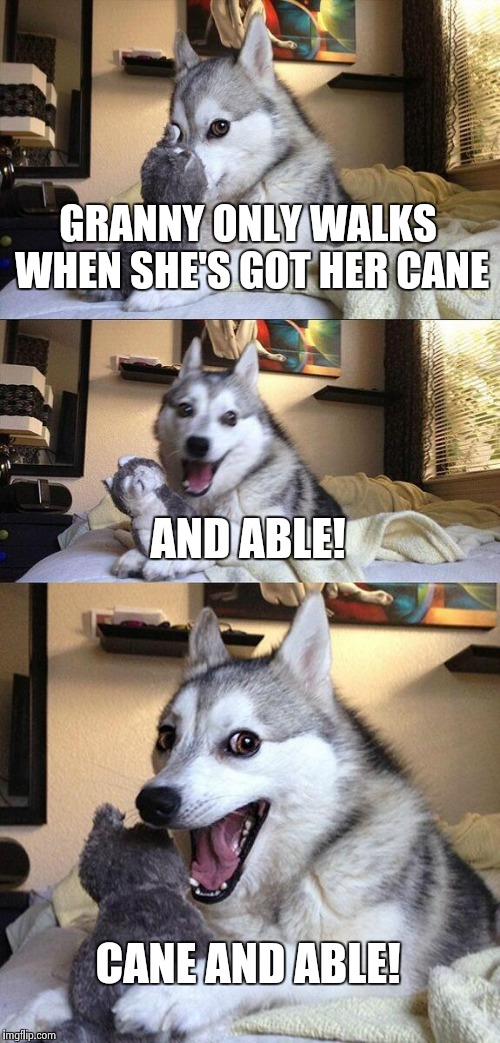 Bad Pun Dog Meme | GRANNY ONLY WALKS WHEN SHE'S GOT HER CANE AND ABLE! CANE AND ABLE! | image tagged in memes,bad pun dog | made w/ Imgflip meme maker