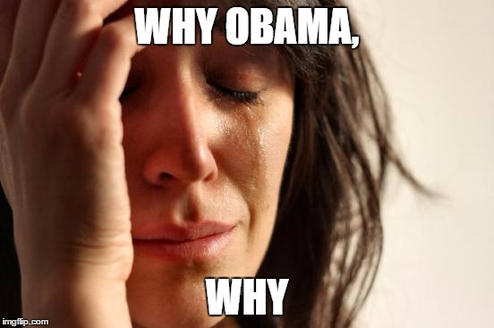 First World Problems Meme | WHY OBAMA, WHY | image tagged in memes,first world problems | made w/ Imgflip meme maker