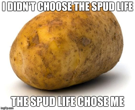 I am a potato | I DIDN'T CHOOSE THE SPUD LIFE THE SPUD LIFE CHOSE ME | image tagged in i am a potato | made w/ Imgflip meme maker