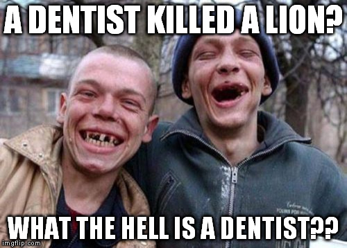 Ugly Twins Meme | A DENTIST KILLED A LION? WHAT THE HELL IS A DENTIST?? | image tagged in memes,ugly twins | made w/ Imgflip meme maker