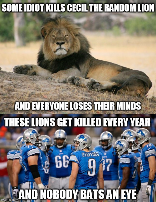 SOME IDIOT KILLS CECIL THE RANDOM LION AND NOBODY BATS AN EYE THESE LIONS GET KILLED EVERY YEAR AND EVERYONE LOSES THEIR MINDS | image tagged in funny memes,cecil the lion,detroit lions | made w/ Imgflip meme maker