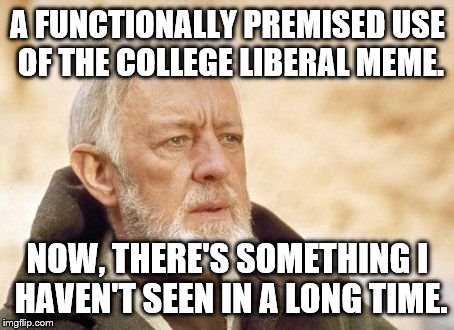 Obi-Wan Kenobi | A FUNCTIONALLY PREMISED USE OF THE COLLEGE LIBERAL MEME. NOW, THERE'S SOMETHING I HAVEN'T SEEN IN A LONG TIME. | image tagged in obi-wan kenobi | made w/ Imgflip meme maker