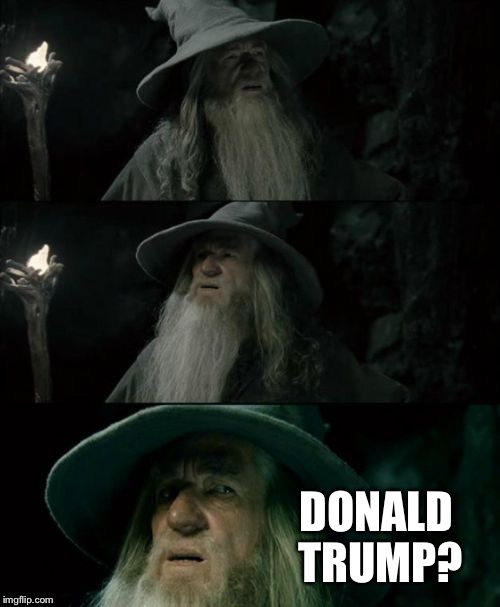 Confused Gandalf Meme | DONALD TRUMP? | image tagged in memes,confused gandalf,AdviceAnimals | made w/ Imgflip meme maker