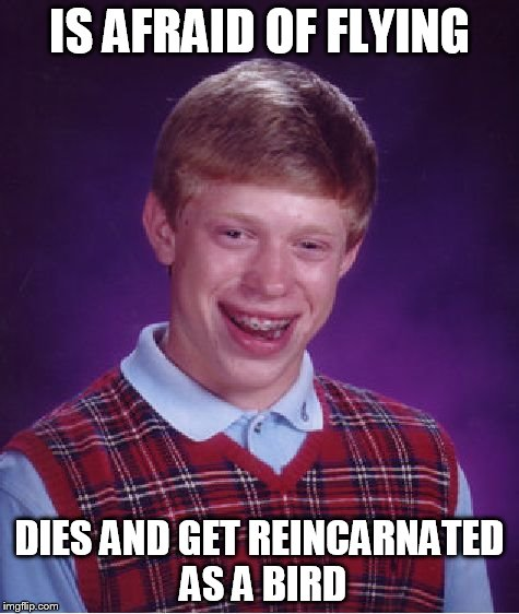 Bad Luck Brian Meme | IS AFRAID OF FLYING DIES AND GET REINCARNATED AS A BIRD | image tagged in memes,bad luck brian | made w/ Imgflip meme maker