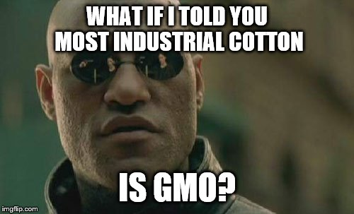Matrix Morpheus Meme | WHAT IF I TOLD YOU MOST INDUSTRIAL COTTON IS GMO? | image tagged in memes,matrix morpheus | made w/ Imgflip meme maker