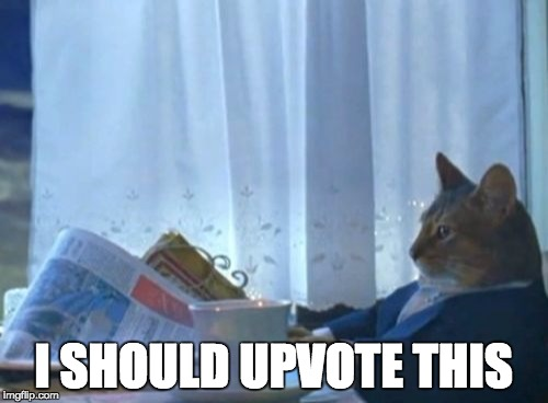 I Should Buy A Boat Cat Meme | I SHOULD UPVOTE THIS | image tagged in memes,i should buy a boat cat | made w/ Imgflip meme maker