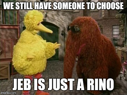 Big Bird And Snuffy | WE STILL HAVE SOMEONE TO CHOOSE JEB IS JUST A RINO | image tagged in memes,big bird and snuffy | made w/ Imgflip meme maker
