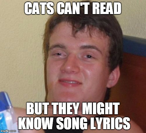 10 Guy Meme | CATS CAN'T READ BUT THEY MIGHT KNOW SONG LYRICS | image tagged in memes,10 guy | made w/ Imgflip meme maker