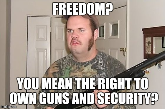 FREEDOM? YOU MEAN THE RIGHT TO OWN GUNS AND SECURITY? | made w/ Imgflip meme maker