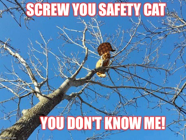 SCREW YOU SAFETY CAT YOU DON'T KNOW ME! | made w/ Imgflip meme maker