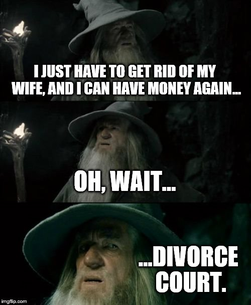 Confused Gandalf Meme | I JUST HAVE TO GET RID OF MY WIFE, AND I CAN HAVE MONEY AGAIN... OH, WAIT... ...DIVORCE COURT. | image tagged in memes,confused gandalf | made w/ Imgflip meme maker