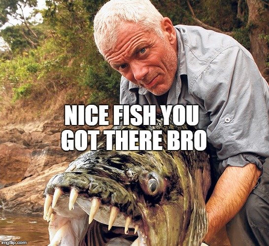 NICE FISH YOU GOT THERE BRO | image tagged in good job | made w/ Imgflip meme maker