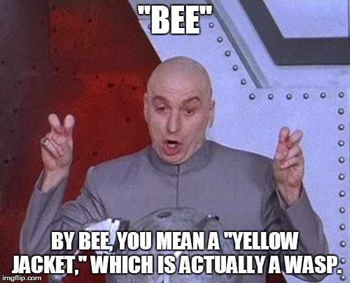 "Dr Evil Laser Meme | ""BEE"" BY BEE, YOU MEAN A ""YELLOW JACKET,"" WHICH IS ACTUALLY A WASP. 