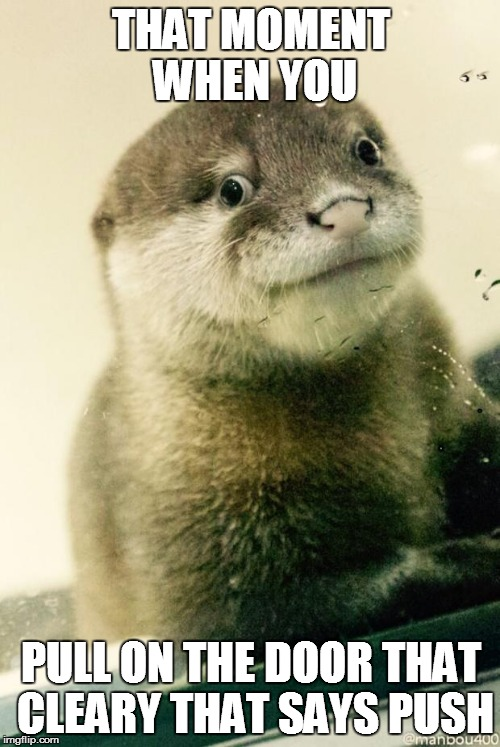 Derp otter  | THAT MOMENT WHEN YOU PULL ON THE DOOR THAT CLEARY THAT SAYS PUSH | image tagged in derp otter  | made w/ Imgflip meme maker