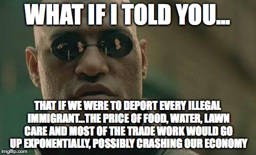 Matrix Morpheus Meme | WHAT IF I TOLD YOU... THAT IF WE WERE TO DEPORT EVERY ILLEGAL IMMIGRANT...THE PRICE OF FOOD, WATER, LAWN CARE AND MOST OF THE TRADE WORK WOU | image tagged in memes,matrix morpheus | made w/ Imgflip meme maker