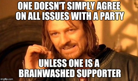 One Does Not Simply Meme | ONE DOESN'T SIMPLY AGREE ON ALL ISSUES WITH A PARTY UNLESS ONE IS A BRAINWASHED SUPPORTER | image tagged in memes,one does not simply | made w/ Imgflip meme maker