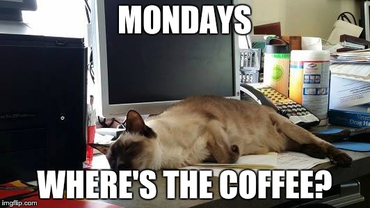 paqn5 image tagged in monday,coffee,exhausted imgflip