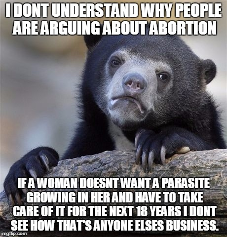 Confession Bear Meme | I DONT UNDERSTAND WHY PEOPLE ARE ARGUING ABOUT ABORTION IF A WOMAN DOESNT WANT A PARASITE GROWING IN HER AND HAVE TO TAKE CARE OF IT FOR THE | image tagged in memes,confession bear | made w/ Imgflip meme maker
