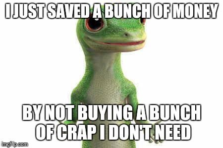 Stop buying frivolous crap and you'll be able to afford the things you actually want | I JUST SAVED A BUNCH OF MONEY BY NOT BUYING A BUNCH OF CRAP I DON'T NEED | image tagged in geico,memes | made w/ Imgflip meme maker