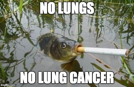 Fish 1 Humans 0 | NO LUNGS NO LUNG CANCER | image tagged in fish,smoking | made w/ Imgflip meme maker