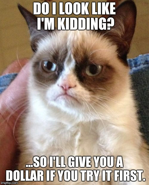 Grumpy Cat Meme | DO I LOOK LIKE I'M KIDDING? ...SO I'LL GIVE YOU A DOLLAR IF YOU TRY IT FIRST. | image tagged in memes,grumpy cat | made w/ Imgflip meme maker