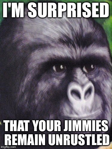 That really rustled my jimmies! | I'M SURPRISED THAT YOUR JIMMIES REMAIN UNRUSTLED | image tagged in that really rustled my jimmies | made w/ Imgflip meme maker