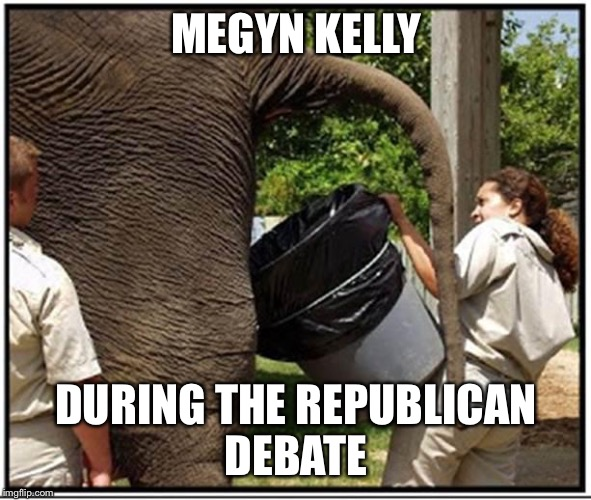 Elephant | MEGYN KELLY DURING THE REPUBLICAN DEBATE | image tagged in elephant | made w/ Imgflip meme maker