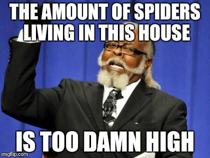 Too Damn High Meme | THE AMOUNT OF SPIDERS LIVING IN THIS HOUSE IS TOO DAMN HIGH | image tagged in memes,too damn high | made w/ Imgflip meme maker