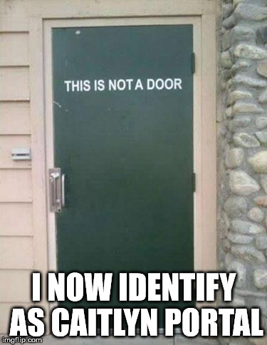 Confused Door | I NOW IDENTIFY AS CAITLYN PORTAL | image tagged in confused door,caitlyn jenner | made w/ Imgflip meme maker